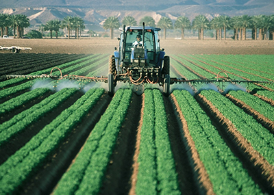 A farmer driving a tractor spraying plants.