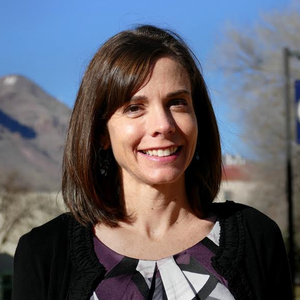 dr  julie ford  new mexico tech
